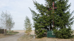 Krzyż przy polnej drodze. Stary Jaworów, gmina Jaworzyna Śląska, powiat świdnicki.