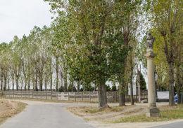Kolumna morowa z figurą św. Marii Niepokalanej stojąca przy ulicy Spokojnej. Wierzbna, gmina Żarów, powiat świdnicki.