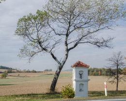 Przydrożna kapliczka stojąca przy drodze do Braszowic. Bardo, powiat ząbkowicki.