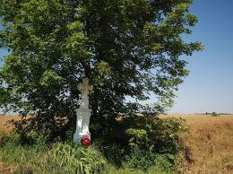 Przydrożny krzyż kamienny. Korczmin, gmina Ulhówek, powiat tomaszowski.