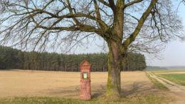 Przydrożna kapliczka stojąca na polu za wsią. Podmokle Małe, gmina Babimost, powiat zielonogórski.