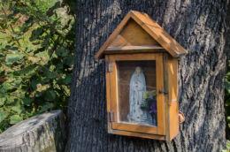 Przydrożna drewniana kapliczka skrzynkowa na drzewie. Laskowa, powiat limanowski.