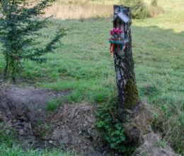 Przydrożna drewniana kapliczka na drzewie. Limanowa, powiat limanowski.