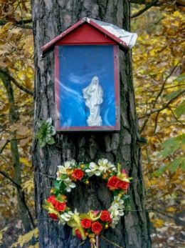 Przydrożna kapliczka skrzynkowa na drzewie przy ulicy Jędrzeja Moraczewskiego. Sulejówek, powiat miński.