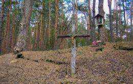 Krzyż przydrożny i kapliczka skrzynkowa na drzewie. Puszcza Kampinoska, gmina Leoncin, powiat nowodworski.