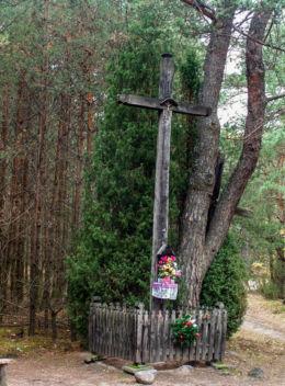 Krzyż przydrożny drewniany z kapliczką stojący na rozstaju dróg. Truskaw, gmina Czosnów, powiat nowodworski.