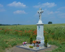 Krzyż przydrożny - fundator Franz Moczygemba 1877 r. Płużnica Wielka, gmina Strzelce Opolskie, powiat strzelecki.
