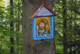 Przydrożna drewniana kapliczka skrzynkowa na drzewie przy szlaku na Szyndzielnię. Bielsko-Biała, Bielsko-Biała.