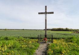 Krzyż przydrożny stojący w polu. Sokolna, gmina Tarnówka, powiat złotowski.