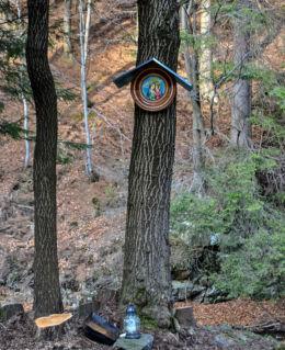 Obraz Matki Bożej na drzewie obok krzyża. Bielice, gmina Stronie Śląskie, powiat kłodzki.
