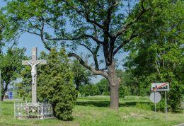Przydrożny krzyż kamienny. Samborz, gmina Kostomłoty, powiat średzki.