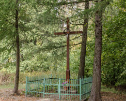 Krzyż przydrożny drewniany stojący przy wjeździe do wsi. Bagieniec, gmina Jaworzyna Śląska, powiat świdnicki.