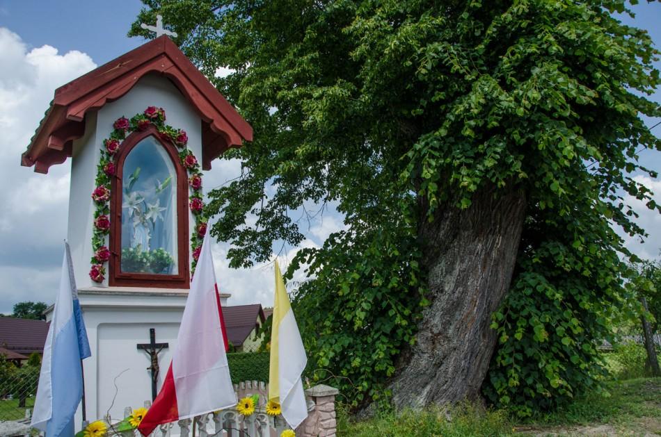 Kapliczka przydrożna, murowana. Biedaszkowo, gminia Żmigród, powiat trzebnicki.