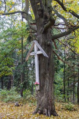Krzyż drewniany przy drodze wiodącej na szczyt Kalwari. Bardo, powiat ząbkowicki.