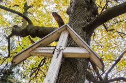 Krzyż drewniany przy dawnej Drodze Niemieckiej wiodącej na szczyt Kalwari. Bardo, powiat ząbkowicki.
