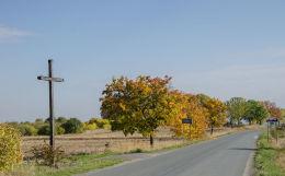Krzyż przydrożny drewniany. Brzeźnica, gmina Bardo, powiat ząbkowicki.