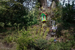 Przydrożna drewniana kapliczka skrzynkowa na drzewie. Żółkiewka, powiat krasnostawski.