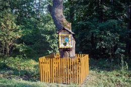Przydrożna drewniana kapliczka skrzynkowa na drzewie. Dominikanówka, Gmina Krasnobród, powiat zamojski.