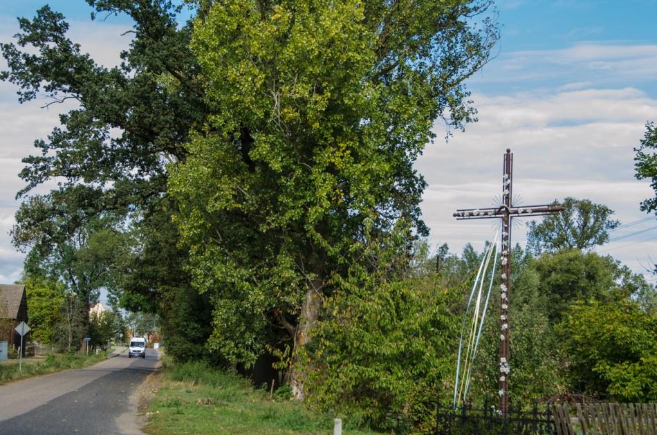 Krzyż metalowy stojący na rozstaju dróg. Głuchowo, gmina Słońsk, powiat sulęciński.