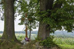 Drewniany krzyż przydrożny. Kipszna, gmina Ciężkowice, powiat tarnowski.