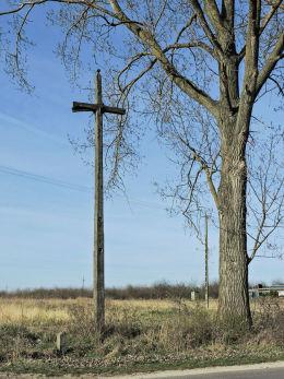 Wysoki przydrożny krzyż drewniany stojący na skrzyżowaniu przy wjeździe do wsi. Pacew, gmina Promna, powiat białobrzeski.