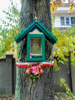 Przydrożna kapliczka skrzynkowa na drzewie przy ulicy Jędrzeja Moraczewskiego 48. Sulejówek, powiat miński.