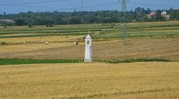 Kapliczka stojąca w polu. Folwark, gmina Prószków, powiat opolski.