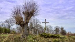 Przydrożny krzyż przy Trakcie Łańcuckim. Piątkowa, gmina Błażowa, powiat rzeszowski.