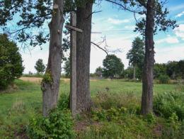 Drewniany krzyż przydrożny. Chrabostówka, gmina Narew, Hajnówka County.