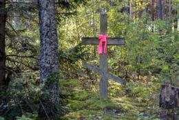 Prawosławny krzyż przydrożny. Dubicze Cerkiewne, Hajnówka County.