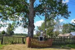 Drewniany krzyż przydrożny. Koryciski , gmina Dubicze Cerkiewn, Hajnówka County.