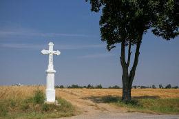 Krzyż przydrożny, kamienny. Bidziny, gmina Wojciechowice, powiat opatowski.