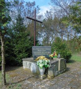 Krzyż i pomnik na dawnym cmentarzu ewangelickim. Chrośnica, gmina Zbąszyń, powiat nowotomyski.