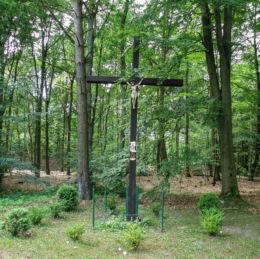 Krzyż przydrożny stojący przy drodze na Szczecin. Siedlice, gmina Police, powiat policki.